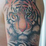 tatoo-v-krasnoyarske-149